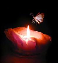 Karma-eller-Tilgivelse-13-Åndsvidenskab-esoterisk-livssyn