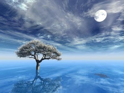 Som-Om-02-11-Esoterisk-visdom-og-åndsvidenskab