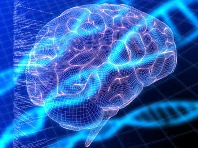 Videnskabernes-integrering-19-Brian-Arrowsmith