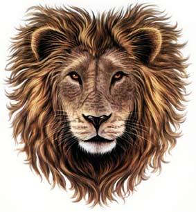 tegn en løve