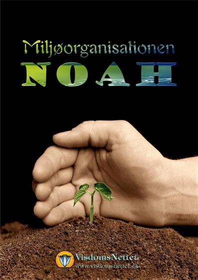 Noah-Miljøorganisation