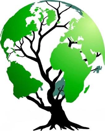 Noah-Miljøorganisation-02