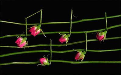 Behovet-for-musik-03-Brian-Arrowsmith