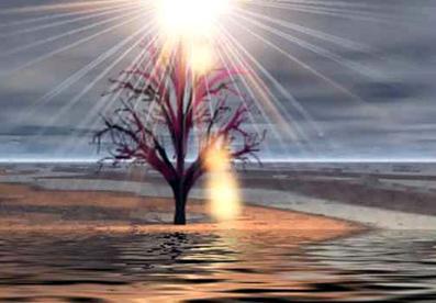 Reinkarnation-den-tabte-dimension-12-Ove-von-Spaeth