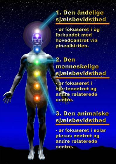 Menneske-kend-dig-selv-05-14-