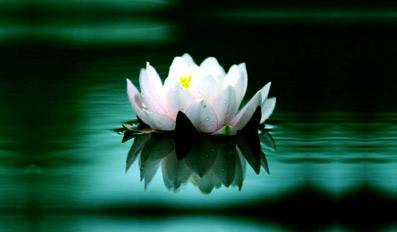 Skabende-meditation-Tredje-år-01