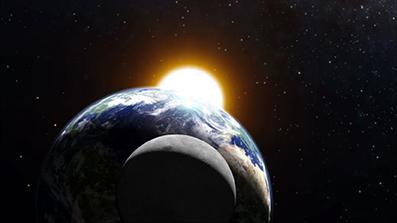 Evolutionens-veje-&-afveje-21-Hardy-Bennis