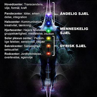 Meditation-og-sjælens-udvikling-06
