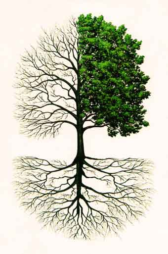 Som-Om-05-02-Esoterisk-visdom-og-åndsvidenskab