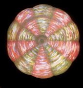 Det-skjulte-menneske-07-Intro-til-den-esoteriske-lære