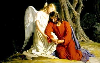 Den-åndelige-udviklingsvej-01-07-Esoterisk-lære