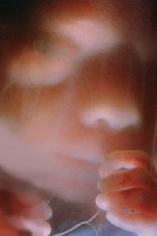 Fødslens-Mirakel-Geoffrey-Hodson-13-Esoterisk-forskning